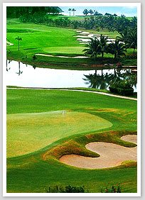 Featured Florida Golf Schools Location
