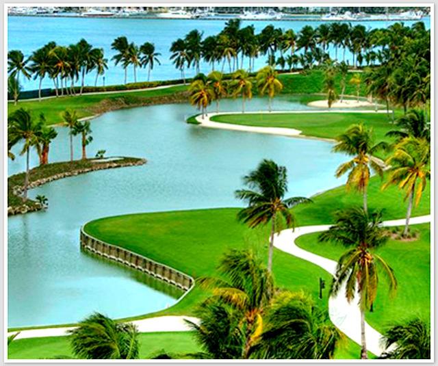 Sawgrass Hotel Golf Location
